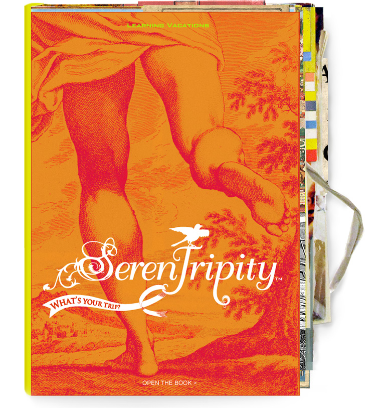 Serentripity book cover